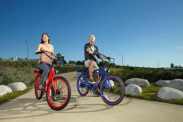 Book Electric Bike Tour through Prominent Richmond Neighborhoods on Viator
