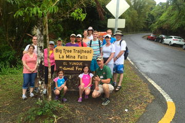 Rainforest Nature Walk to La Mina Waterfall