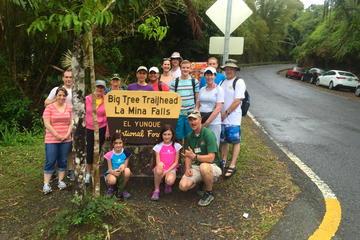 Rainforest Nature Walk to La Mina...
