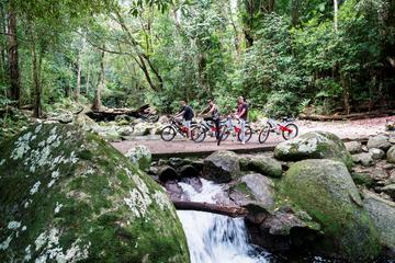 Goldsborough Goldfield Trail Electric Bike Tour from Cairns