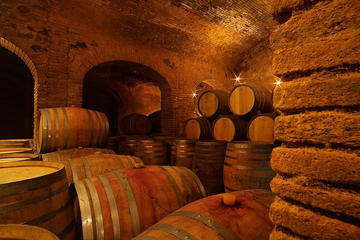 Private Priorat Experience with Wine Oil and History Tour from ...
