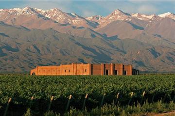 Escapada privada de un día: cata de vinos de Mendoza con almuerzo