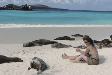 6-Day Galapagos Tour: Santa Cruz and Isabela Islands