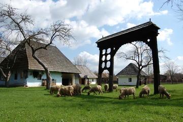 SzékelyLandの自然と文化のベストブラショフからの1日の旅行