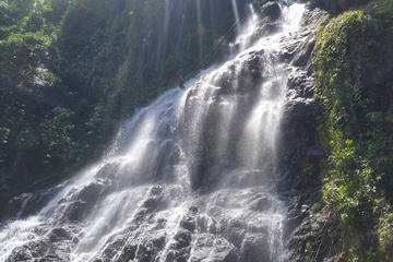 Big Waterfall Rappel Adventure