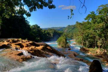 Day Trip to Agua Azul Waterfalls and