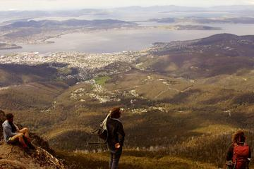 Hobart Hike: Mt Wellington Summit to...