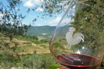 Greve in Chianti Wine Tasting and Winery Tour
