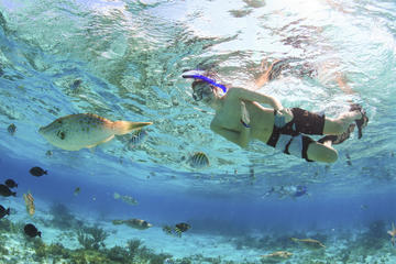 Private Stingray City and Snorkeling Full Day Charter