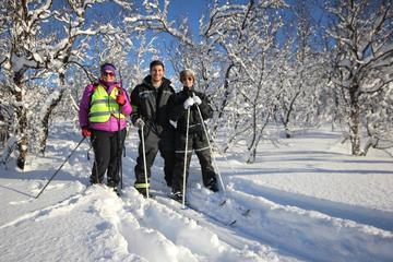 Tromso Cross Country Skiing