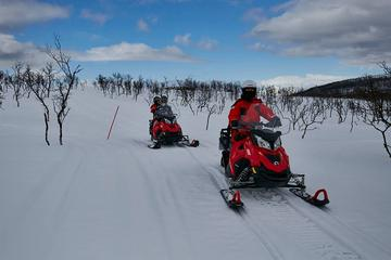 Tromso Snowmobile Expedition