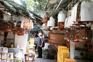 Private Half Day Tour: Hong Kong Local Markets Hopper