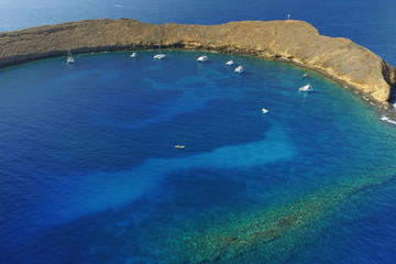 Maui Reef Adventure Tours aboard the Ocean Freedom and Reef Explorer