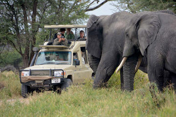 5Days Best Camping Safari in Tanzania