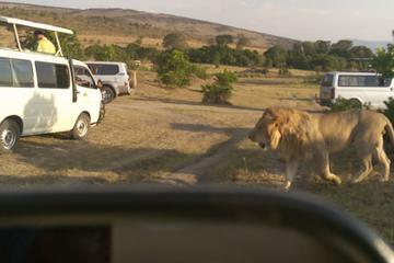6Day Masai Mara, Hell's Gate, Lake Naivasha, Giraffe Center & Elephant Orphanage