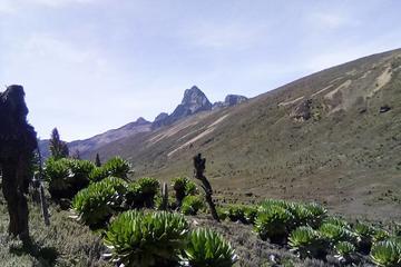 Mount Kenya Trekking Through Sirimoni-Chogoria Route