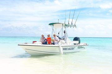 Semi-Private Snorkeling Excursion - Motor boat Trophy 21 ft - Punta Cana