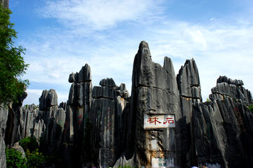 All Inclusive Private Kunming Day Tour to Stone Forest plus Flower and Bird Market