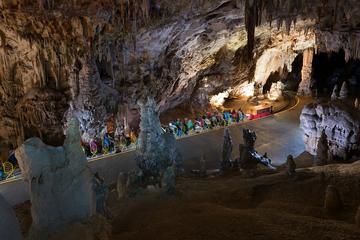 Super Saver: Postojna Cave and...