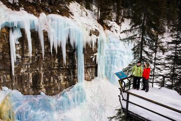 Johnston Canyon Icewalk from Banff AM