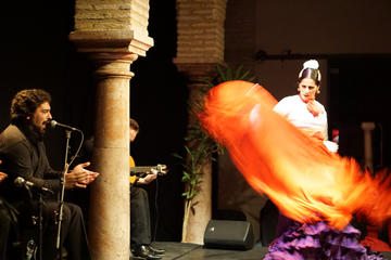 Evening Tapas and Flamenco Tour in...