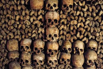 Visita con acceso especial a las catacumbas de París