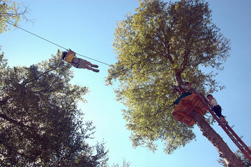 2 Hour Ziplines and Tree Course...
