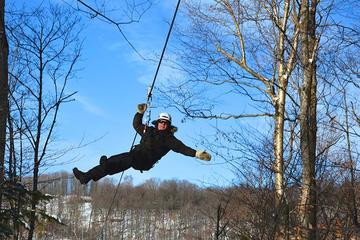 Book Mega Ziplines and Snowshoe Mont Tremblant (2h) on Viator