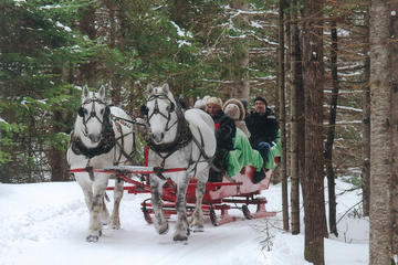 Book Small Private Sleighride on Viator