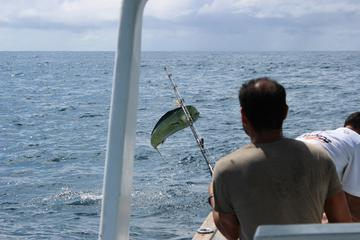 Private Fishing Tour from Puerto...