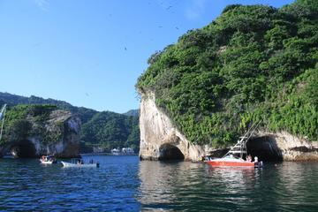 Los Arcos Snorkeling