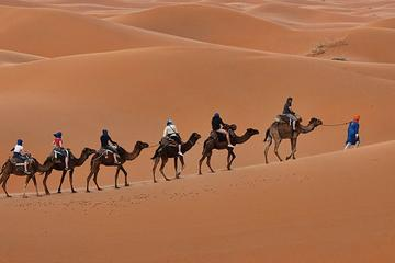 6 Days Golden Triangle with Jaisalmer Desert Safari Private Tour from Delhi