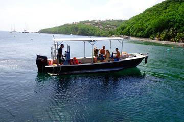 Plongée sous-marine en Guadeloupe...