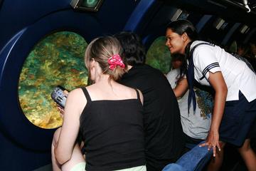 Visite des Maldives en sous-marin