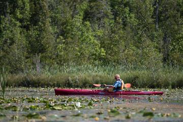 Book Door County Wetlands Kayak Tour on Viator