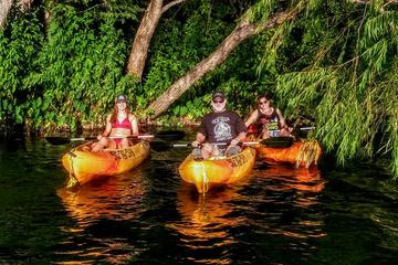 San Marcos River Adventure Kayak Tour