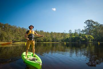 Walkabout Creek Adventures Stand Up Paddle Board Hire