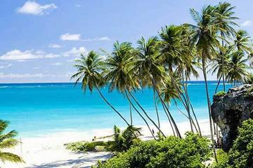 Barbados Full-day Coast to Coast Tour