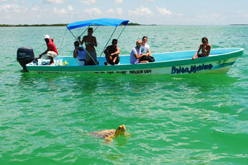 Small-Group Tour: Sian Ka'an Biosphere Reserve Day Trip from Tulum