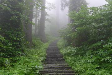 Mt Haguro Pilgrim Walking Tour