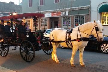 Book Private Jingle Bell Ride Through Fredericksburg on Viator