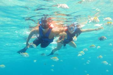Maroma Beach Reef Adventure with Catamaran Ride