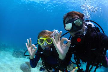 Scuba Diver PADI Certification Course