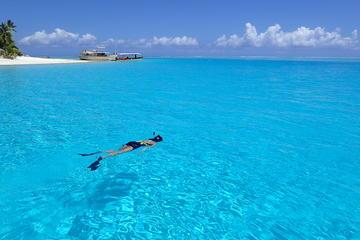 Bora Bora Crociera di una giornata (con i prezzi)