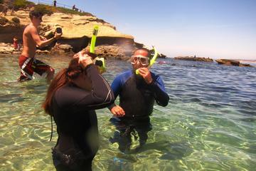 Snorkel Adventure Tour at La Jolla...