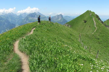 Private Full-Day Alpine Ridge Hiking...