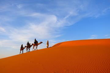 7 Day guided Casablanca tour to...