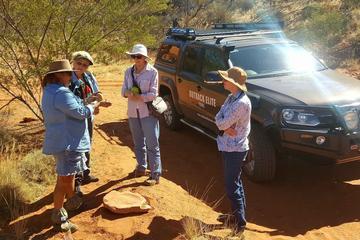 Half Day Tour to Ewaninga and Aboriginal Experience at Oak Valley