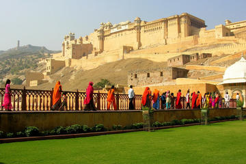 Private Jaipur Day Trip with Forts and Royal Palaces visit with Lunch from Delhi