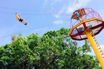 Rainforest Zipline in the El Yunque...
